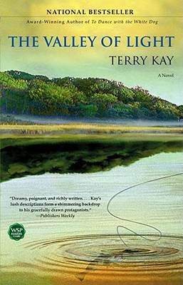The Valley of Light: A Novel, Kay, Terry