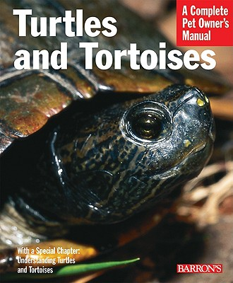 Image for Turtles And Tortoises