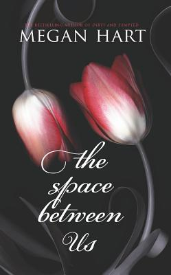 The Space Between Us, Megan Hart