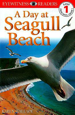 Image for A Day at Seagull Beach