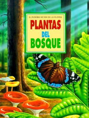 Image for Plantas De Los Bosques (Increible Mundo de Las Plantas)