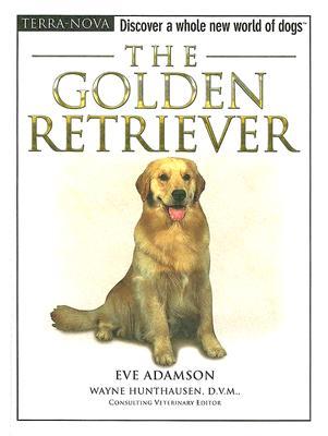 Image for GOLDEN RETRIEVER