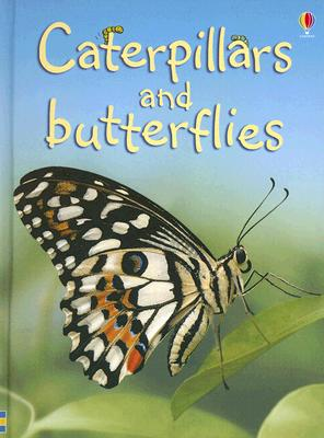 Image for Caterpillars and Butterflies (Beginners Nature, Level 1)