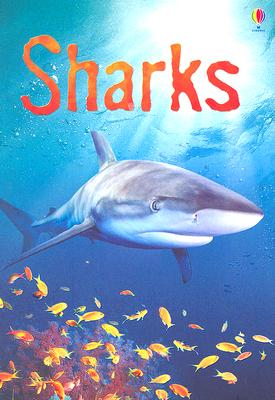 Sharks: Information for Young Readers - Level 1 (Usborne Beginners), Catriona Clarke