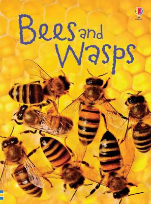 Bees and Wasps (Beginner's Nature), MacLaine, James