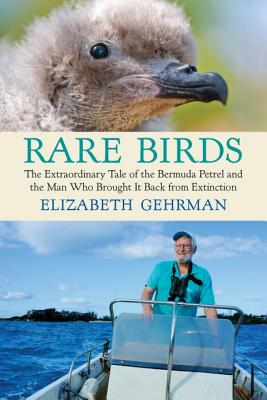 Image for Rare Birds: The Extraordinary Tale of the Bermuda Petrel and the Man Who Brought It Back from Extinction
