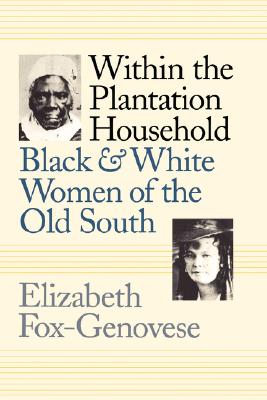 Image for Within the Plantation Household: Black and White Women of the Old South