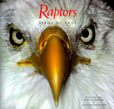 Image for Raptors: Birds of Prey