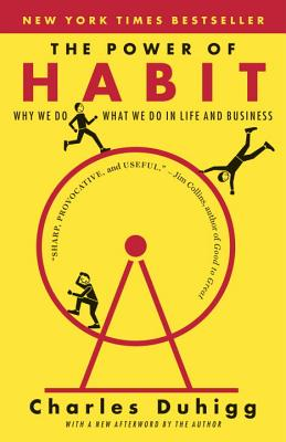 Image for POWER OF HABIT: WHY WE DO WHAT WE DO IN LIFE AND BUSINESS