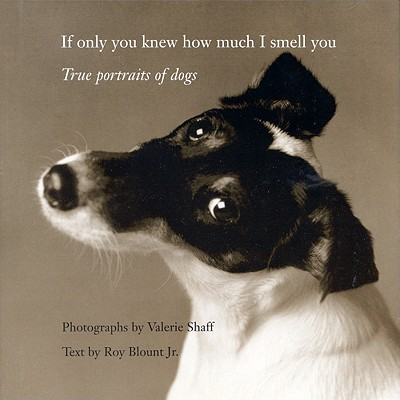 Image for IF ONLY YOU NEW HOW MUCH I SMELL YOU TRUE PORTRAITS OF DOGS