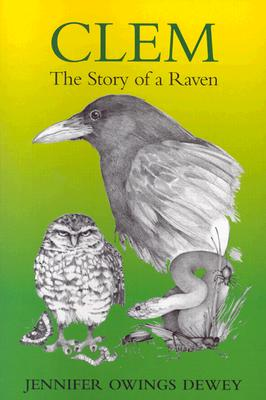 Image for Clem: The Story of a Raven