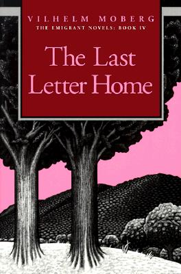 Image for Last Letter Home
