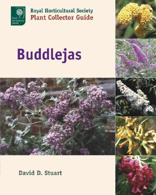Image for Buddlejas