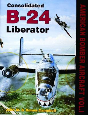 Image for Consolidated B-24 Liberator
