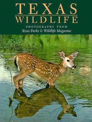 Image for Texas Wildlife