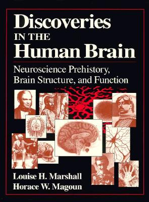 Image for Discoveries in the Human Brain: Neuroscience Prehistory, Brain Structure, and Function