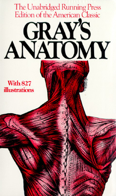 Image for Anatomy, Descriptive and Surgical, 1901 Edition
