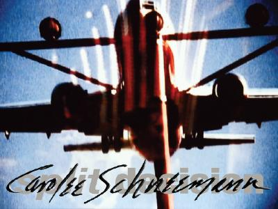 Image for Carolee Schneemann: Split Decision