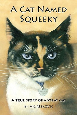 Image for A Cat Named Squeeky