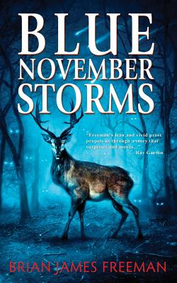 Image for Blue November Storms