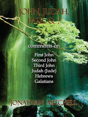 John, Judah, Paul & ?: Comments on First John, Second John, Third John, Judah (Jude), Hebrews, Galatians, Mitchell, Jonathan Paul
