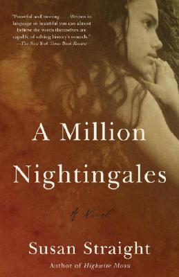 Image for MILLION NIGHTINGALES
