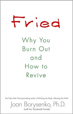 Image for Fried: Why You Burn Out and How to Revive