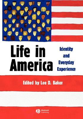 Image for Life in America : Identity and Everyday Experience