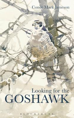 Image for Looking for the Goshawk