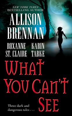 What You Can't See, Allison Brennan, Karin Tabke, Roxanne St. Claire