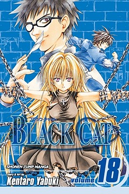 Image for Black Cat, Vol. 18