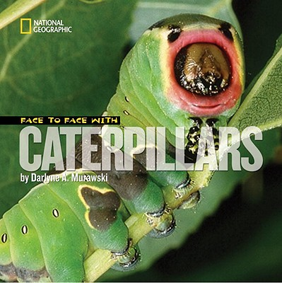 Image for Face to Face with Caterpillars (Face to Face with Animals)