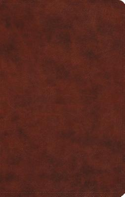 Image for ESV Large Print Value Thinline Bible (TruTone, Chestnut)