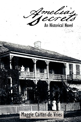 Image for Amelia's Secrets: An Historical Novel