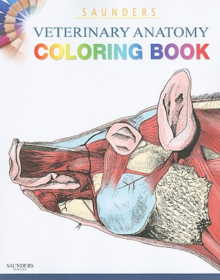 Image for Saunders Veterinary Anatomy Coloring Book