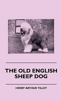 The Old English Sheep Dog, Tilley, Henry Arthur