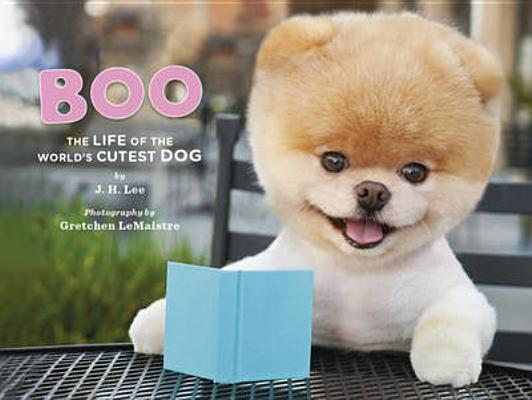 Image for Boo: The Life of the World's Cutest Dog (Halloween Books for Kids, Halloween Books for Toddlers, Cute Halloween Stories)