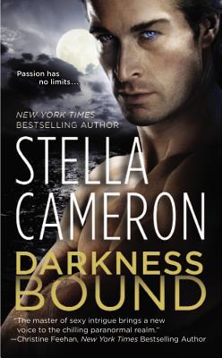 Darkness Bound (Chimney Rock), Stella Cameron