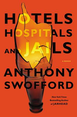 Image for Hotels  Hospitals  and Jails