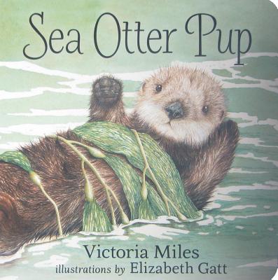 Sea Otter Pup, Miles, Victoria