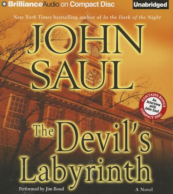 Image for The Devil's Labyrinth: A Novel