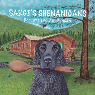 Image for Sarge's Shenanigans