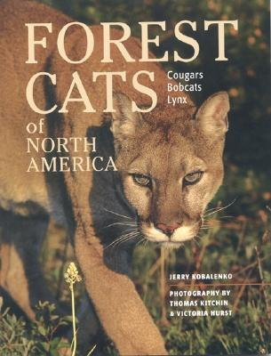 Image for Forest Cats of North America