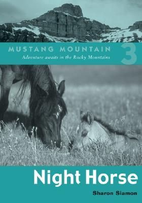 Image for Night Horse (Mustang Mountain Series)