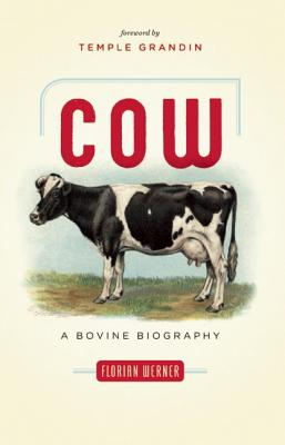 Image for COW A BOVINE BIOGRAPHY