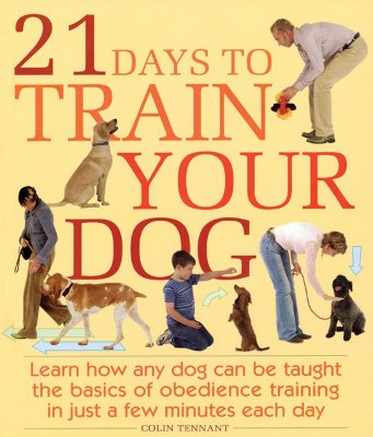 21 Days to Train Your Dog: Learn how any dog can be taught the basics of obedience training in just a few minutes each day, Colin Tennant