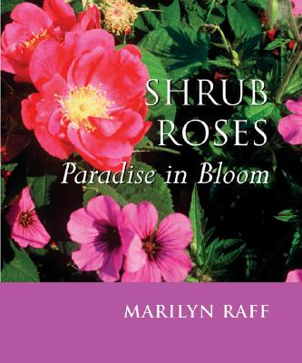 Shrub Roses: Paradise in Bloom, Marilyn Raff