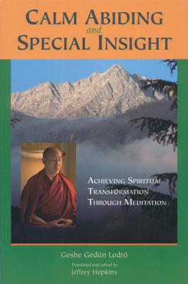 Image for Calm Abiding and Special Insight: Achieving Spiritual Transformation through Meditation (Textual Studies and Translations in Indo-Tibetan Buddhism)