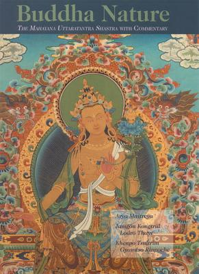 Image for Buddha Nature: The Mahayana Uttaratantra Shastra with Commentary