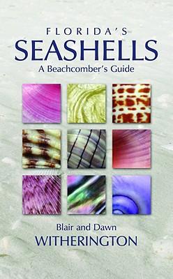 Image for Florida's Seashells